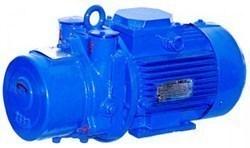 Насос вакуумный водокольцевой ВВН1-1,5 и агрегат электронасосный на его основе.